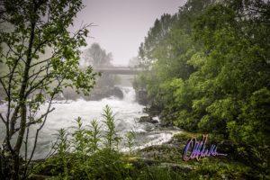 Vannstand i elva